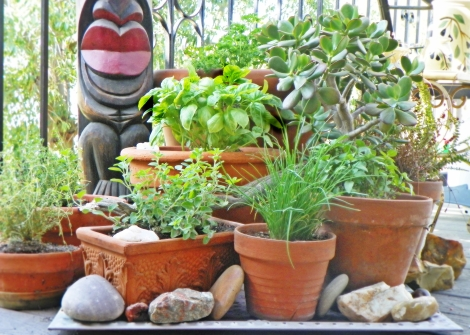 Herbs on the deck!  Even the tiki is smiling!