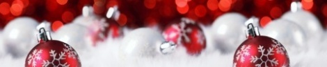 christmas-banner_480x100_scaled_cropp